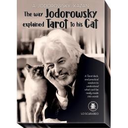 come-jodorosky-spieg-i-tarocchi-al-suo-gatto